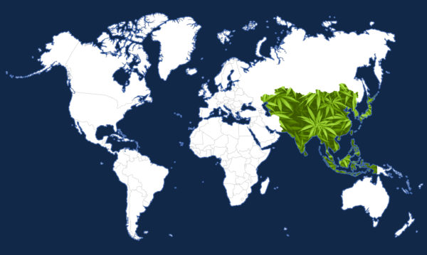 WorldMap-Asia
