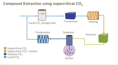 CannaSafe Diagram of Compound Extraction using Supercritical CO2